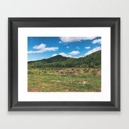 Countryside • Appalachian Trail Framed Art Print