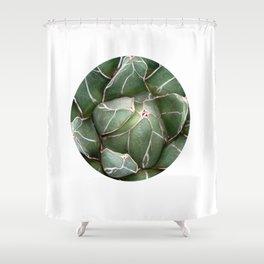 Cactus Succulent Plant art Modern art Scandinavian circle Shower Curtain