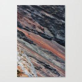 Surface #4 Canvas Print