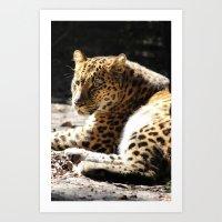 cheetah Art Prints featuring Cheetah by Vicky Rosado