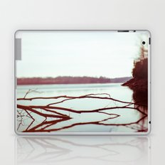 Halcyon Laptop & iPad Skin