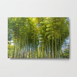 Velvet Forest Metal Print
