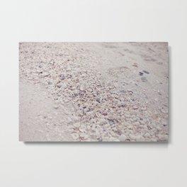 Pink Seashells Metal Print