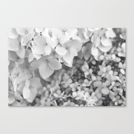 Flowers Blooming (Black and White) Canvas Print