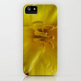 Daylily  iPhone Case