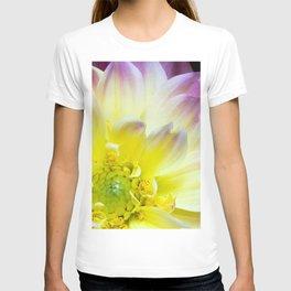 close up of a yellow dahlia T-shirt