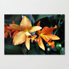 Orange You Glad? Canvas Print