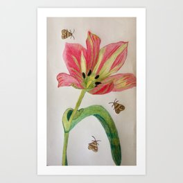 A Tulip for you ! Art Print