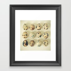 Quail Eggs Framed Art Print