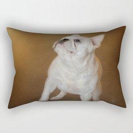 Little Beggar - White French Bulldog Rectangular Pillow