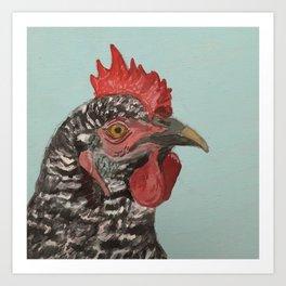 Plymouth Barred Rock Chicken Portrait Art Print
