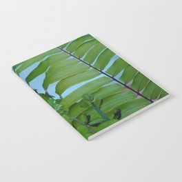 first day of spring Notebook