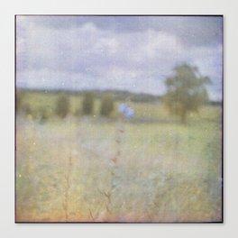 No-man's-land Canvas Print