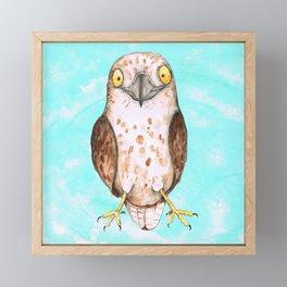 Cute hawk Framed Mini Art Print