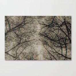 TREE 5.1 Canvas Print