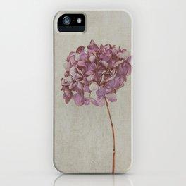 Beautiful Vintage Hydrangea iPhone Case