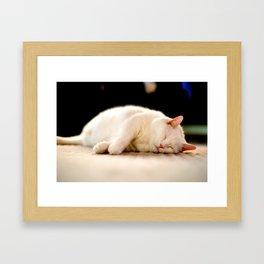 Sleepy Kitty Framed Art Print