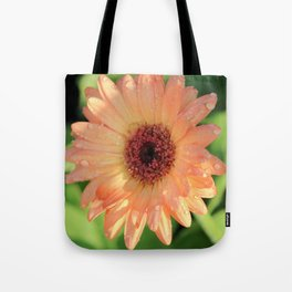 Daisies and Dew Drops Tote Bag