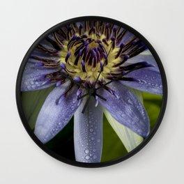 Nymphaea caerulea Wall Clock