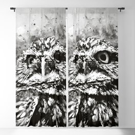 owl portrait 5 wsbw Blackout Curtain