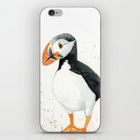 puffin iPhone & iPod Skins featuring Puffin by Priscilla George