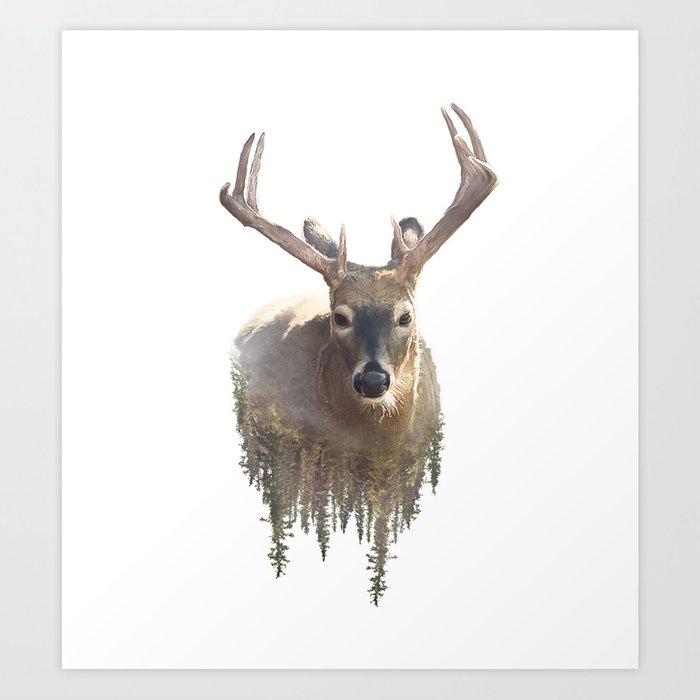 deer and forest watercolor double exposure effect on white background art print by svetlanna society6 deer and forest watercolor double exposure effect on white background art print by svetlanna