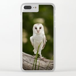 White owl Clear iPhone Case