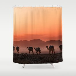Camels Desert Shower Curtain