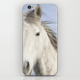 Whit Horse in Color iPhone Skin