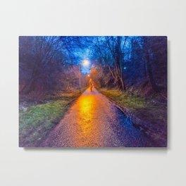Autumn Walk at Sunset Metal Print