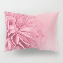 Light Pink Rose #1 #floral #art #society6 Pillow Sham