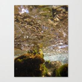 Crystalline Subsurface Canvas Print