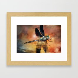 Night Light Of The Dragonfly Framed Art Print