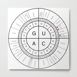 mRNA CODON WHEEL Metal Print