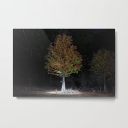 Can't Remember What They Said Metal Print