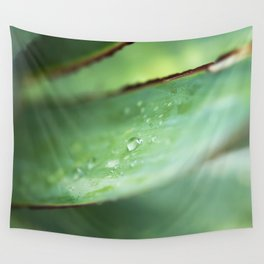 Dew Drops on Agave Leaf Wall Tapestry