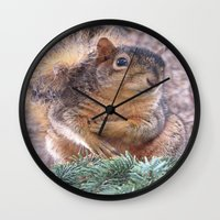 squirrel Wall Clocks featuring Squirrel by Sarahpëa