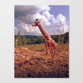 Appalachian Wonderland No. 3 - Safari Canvas Print