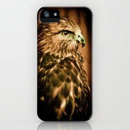 Hawk Eye iPhone Case