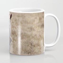 Centered Coffee Mug