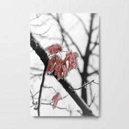 Scarlet Red Leaves in Winter Metal Print