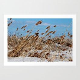 Tame a Wild Wind- horizontal Art Print