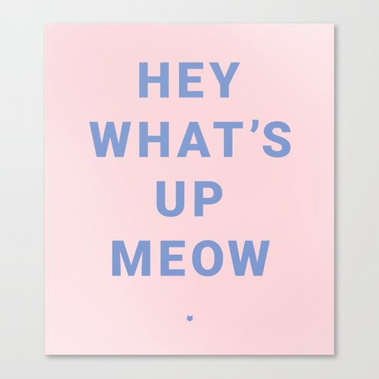 HEY WHAT'S UP MEOW Canvas Print