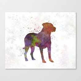 Uruguayan Cimarron in watercolor Canvas Print