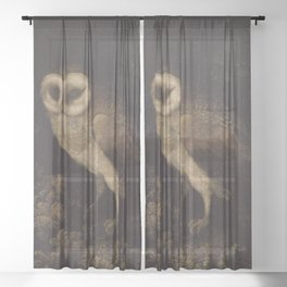 An Owl By Moses Haughton 1780 - Reproduction from original under CC0 Sheer Curtain