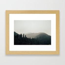 Northern California Forest Framed Art Print