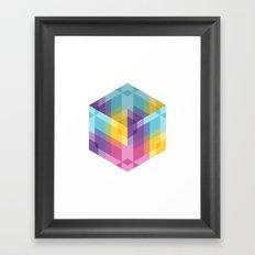 Fig. 024 Framed Art Print