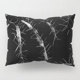 Golden Barrel Cactus Pillow Sham
