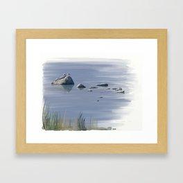 Seagull Siesta Framed Art Print
