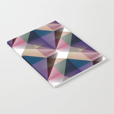 Facets 3 Notebook
